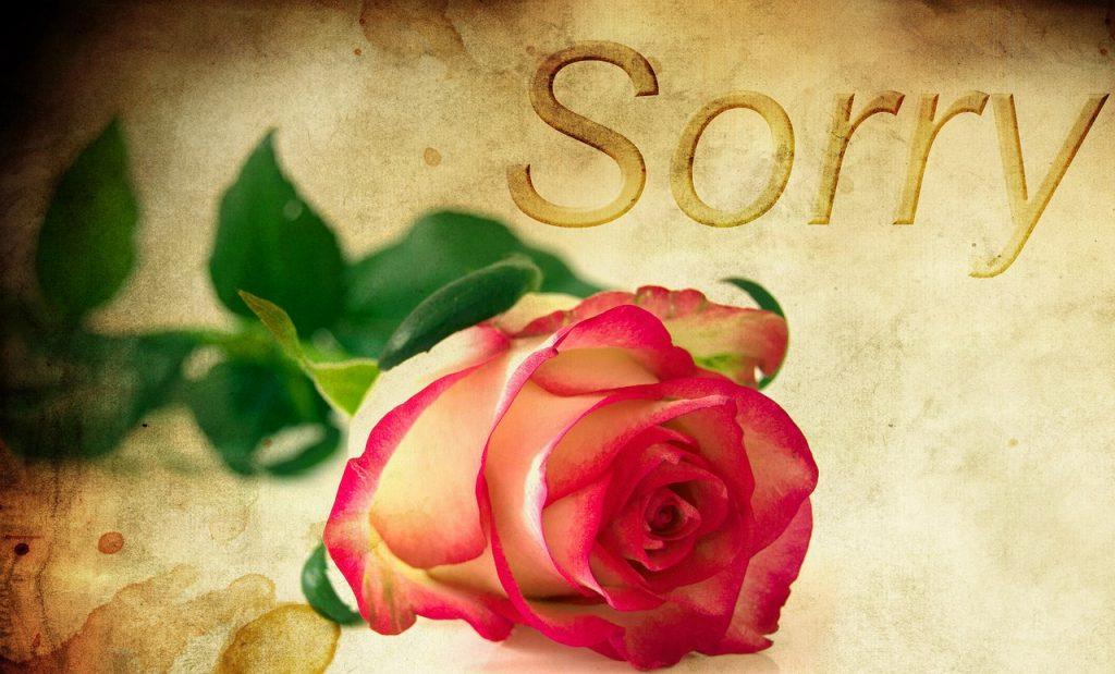 元彼に謝罪の気持ちを伝え続けて復縁