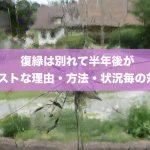 【14項】復縁は別れて半年後がベストな理由・方法・状況毎の対策!